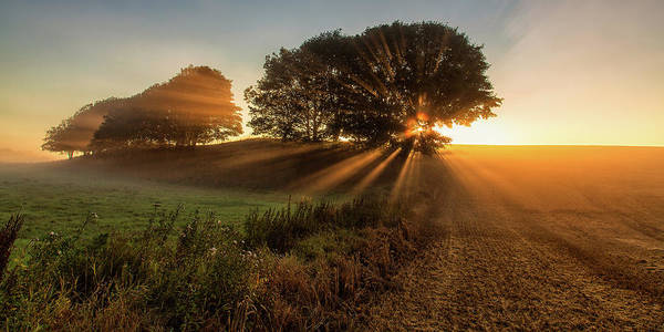 Sunbeam Photograph - Sunbeams by Leif L?ndal