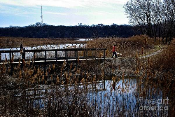Photograph - Sunday Afternoon by Frank J Casella