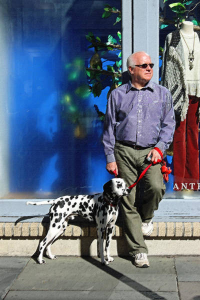 Wall Art - Photograph - Sunday Afternoon On King Street by Suzanne Gaff