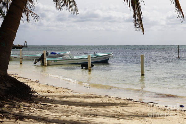 Ambergris Caye Photograph - Sunday Morning Coming Down by Kathy McClure