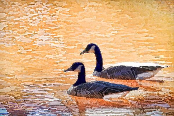 Photograph - Sunday On The Pond by Ludwig Keck