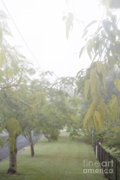 Photograph - Sunday Street Fog by Vicki Ferrari