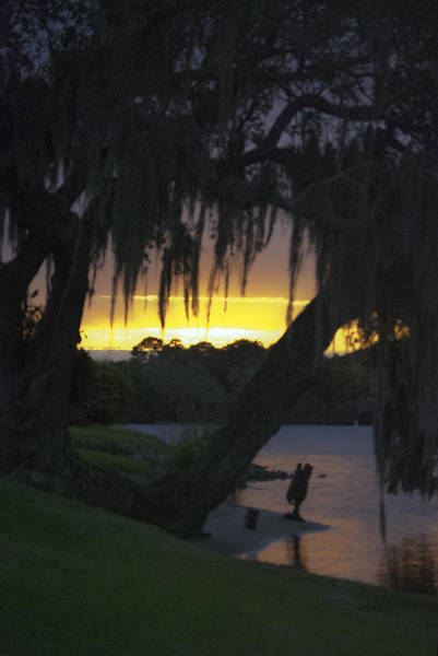 Photograph - Sundown by Judy Hall-Folde