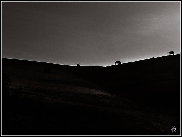 Photograph - Sundown Monochrome by Wayne King