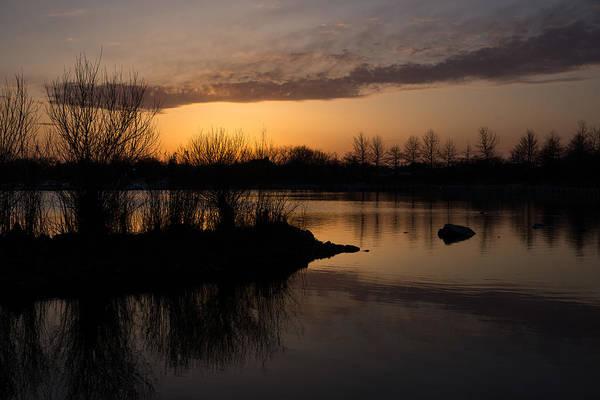 Photograph - Sundown With Bare Branches by Georgia Mizuleva