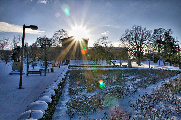Photograph - Sunflare At The Back by Alice Gipson