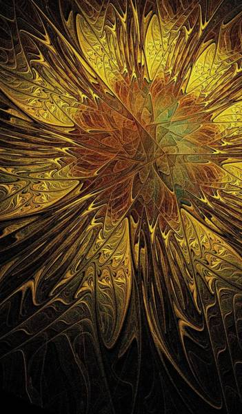 Digital Art - Sunflower by Amanda Moore
