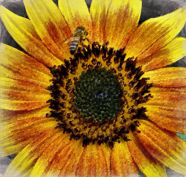 Digital Art - Sunflower And Bee by Joan Reese