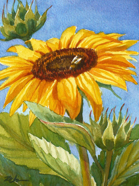 Sunflower And Honey Bee Art Print
