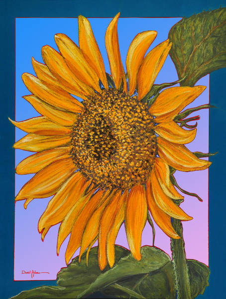 Painting - Da154 Sunflower By Daniel Adams by Daniel Adams