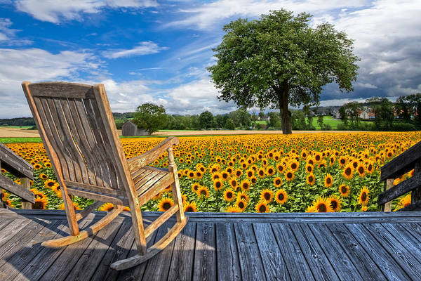 Adirondack Chair Wall Art - Photograph - Sunflower Farm by Debra and Dave Vanderlaan