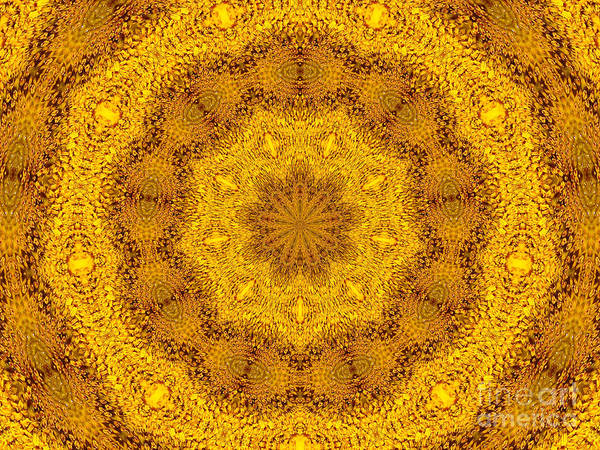 Photograph - Sunflower Kaleidoscope 5 by Rose Santuci-Sofranko
