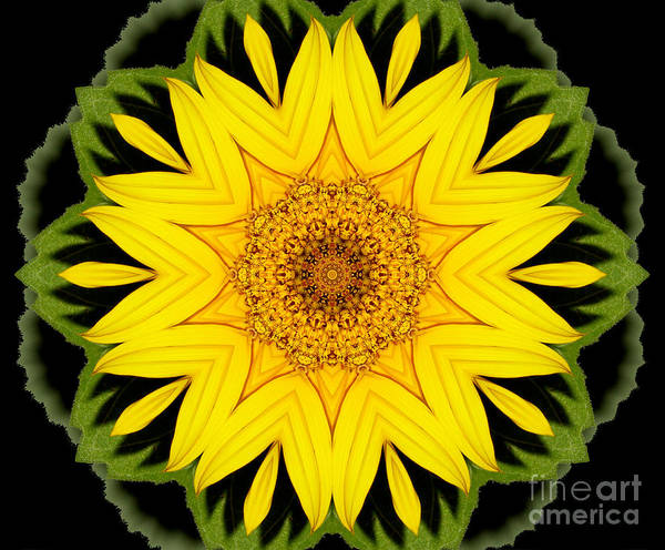 Photograph - Sunflower Kaleidoscope 7 by Rose Santuci-Sofranko