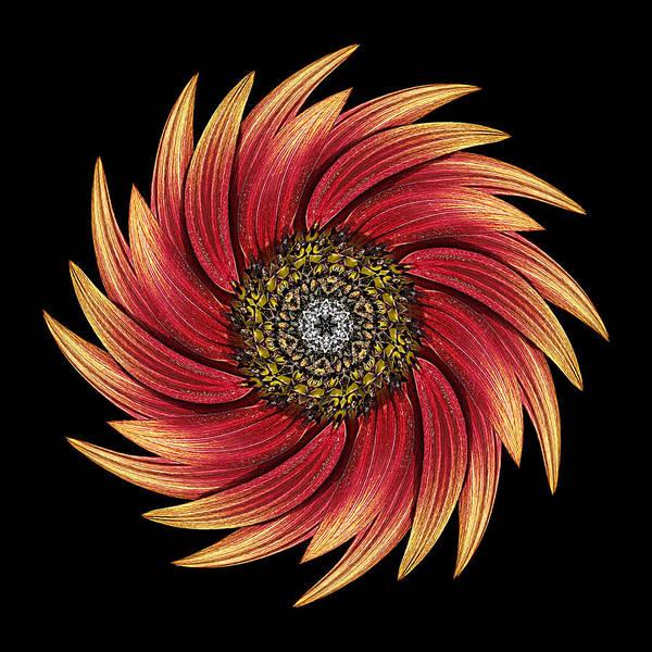 Photograph - Sunflower Moulin Rouge Ix Flower Mandala by David J Bookbinder