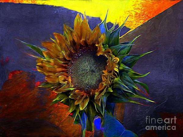 Photograph - Sunflower Splat by John  Kolenberg