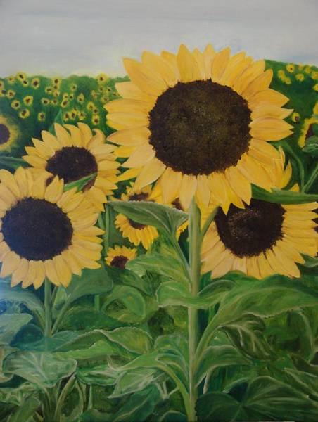 Sunflower Trail Art Print by Shiana Canatella