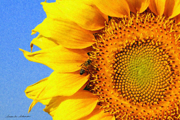 Painting - Sunflower With Bee by Susan Schroeder
