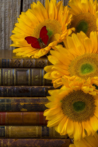 Wood Pile Photograph - Sunflowers And Old Books by Garry Gay