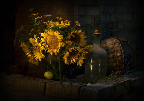 Still Life Wall Art - Photograph - Sunflowers by Anna Aybetova
