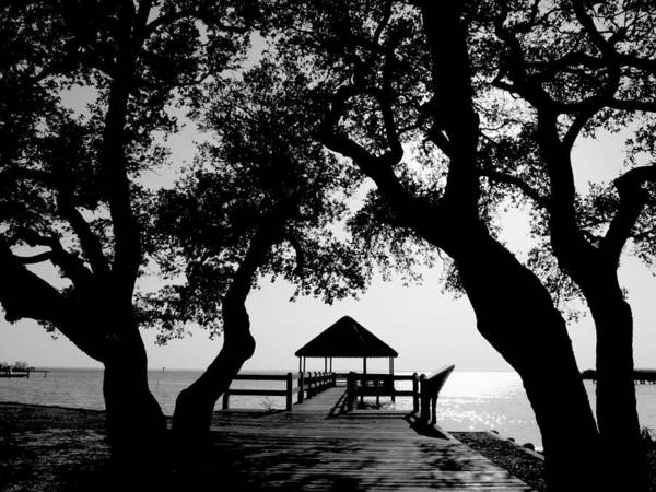 Gazebo Photograph - Sunlight On Currituck Sound by Steven Ainsworth