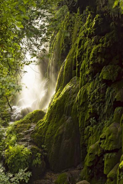 Photograph - Gorman Falls Ray Of Light by Jonathan Davison
