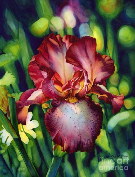 Blooming Painting - Sunlit Iris by Hailey E Herrera