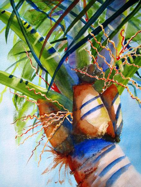 Coconut Painting - Sunlit Palm by Carlin Blahnik CarlinArtWatercolor