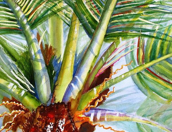 Coconut Painting - Sunlit Palm Fronds by Carlin Blahnik CarlinArtWatercolor