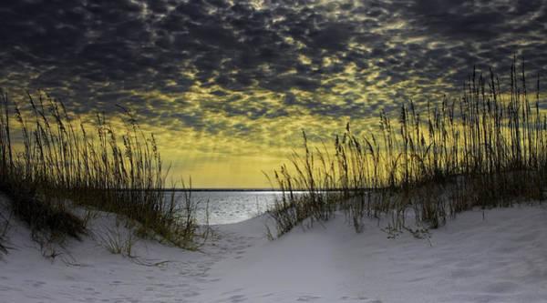 Destin Photograph - Sunlit Passage Pano by Janet Fikar