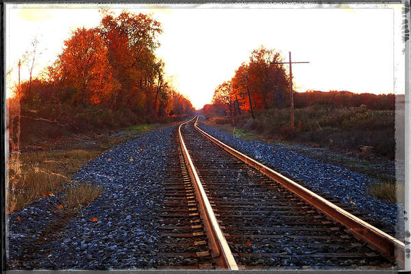 Photograph - Sunlit Tracks by Lars Lentz