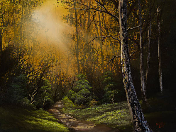 Wall Art - Painting - Sunlit Trail by Chris Steele