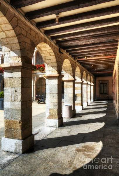 Photograph - Sunny Arches Of Vienne by Mel Steinhauer
