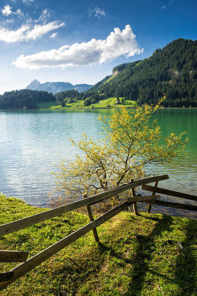 Photograph - Sunny Day At The Lake - Green Grass And Blue Sky In Spring by Matthias Hauser