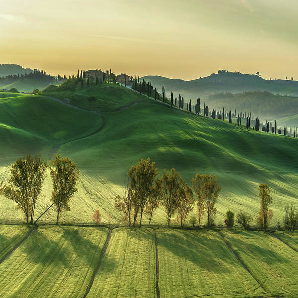 Wall Art - Photograph - Sunny Tuscany by Jarek Pawlak