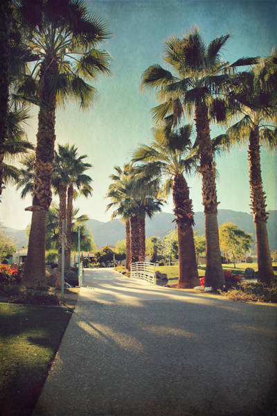 La Quinta Wall Art - Photograph - Sunny Warm Happy by Laurie Search