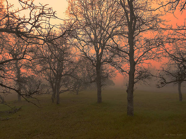 Photograph - Fog And Sunrise 2 by John Norman Stewart