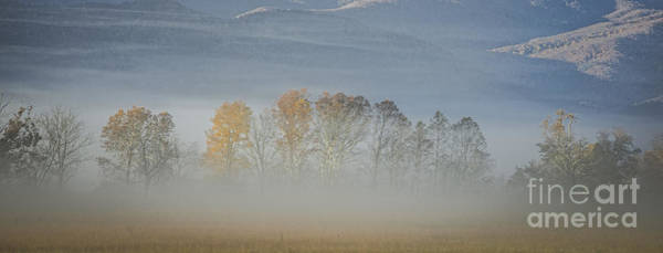 Photograph - Sunrise And Morning Fog by David Waldrop
