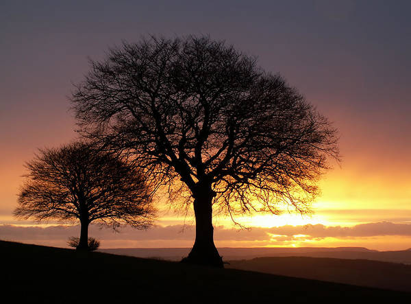 Photograph - Sunrise And Sidmouth Gap by Pete Hemington