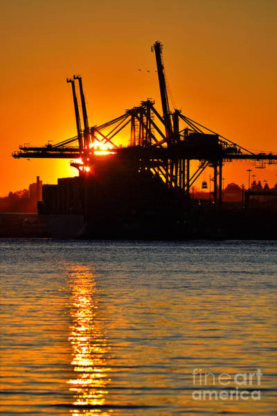 Port Of Vancouver Wall Art - Photograph - Sunrise At Ballantyne Pier - Port Of Vancouver by Terry Elniski