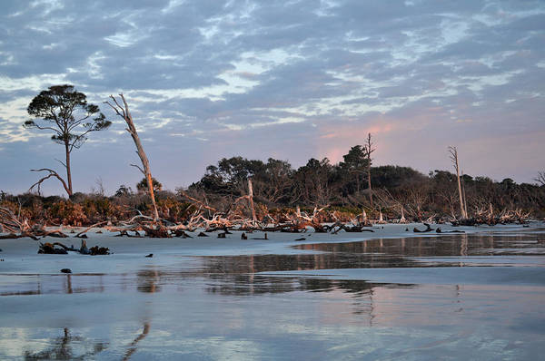 Photograph - Sunrise At Driftwood Beach 7.8 by Bruce Gourley