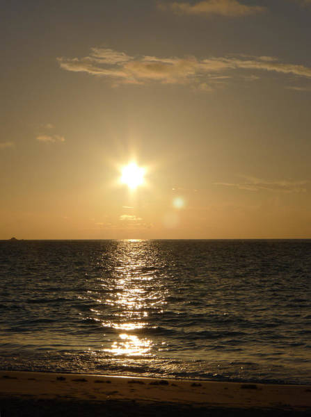 Photograph - Sunrise At John Smith Bay by Richard Reeve