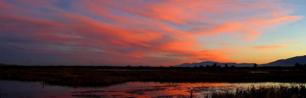 Photograph - Sunrise At Ogden Bay #2 by TL  Mair