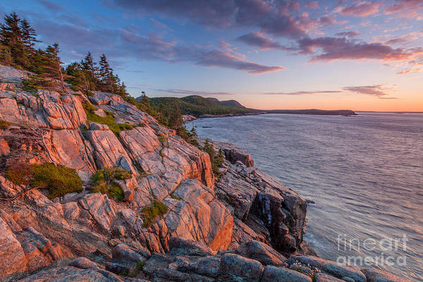Photograph - Sunrise At Otter Cliffs In Acadia  by Susan Cole Kelly