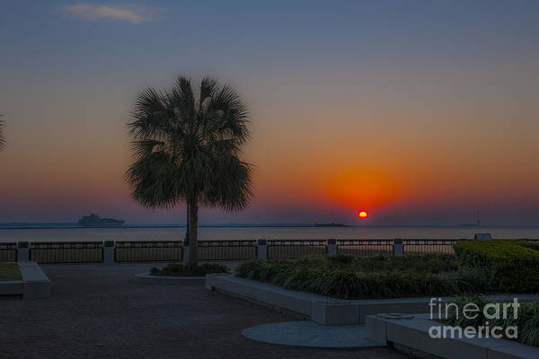 Photograph - Palmetto Sunrise Charleston Sc by Dale Powell