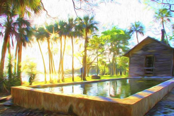Photograph - Sunrise By The Pool by Alice Gipson