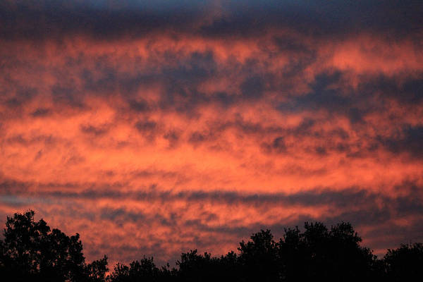 Photograph - D2b6391-sunrise Colors From Our Backyard by Ed  Cooper Photography