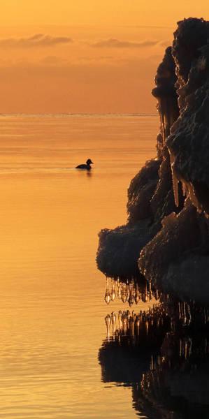 Photograph - Sunrise Cruise  by Theo OConnor
