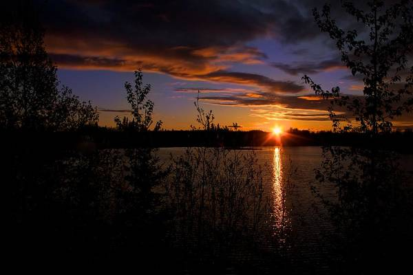 Photograph - Sunrise Fairbanks Alaska by Michael Rogers