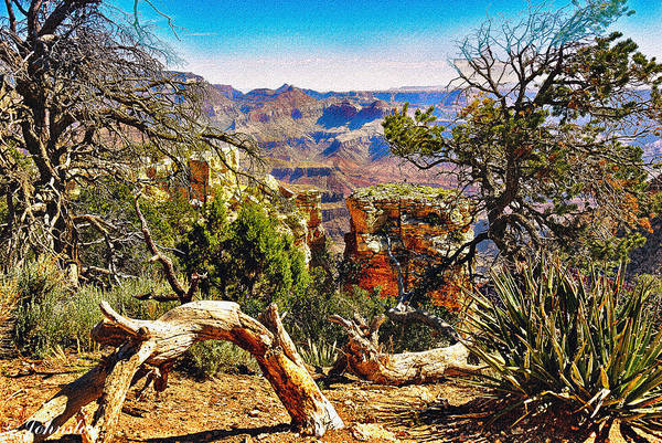 Photograph - Sunrise From Yaki Point by Bob and Nadine Johnston