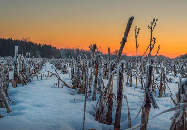 Photograph - Sunrise by Garvin Hunter